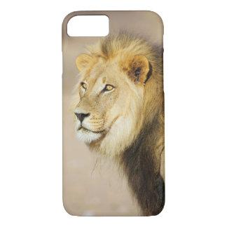 A portrait of a Lion, Kgalagadi Transfrontier Park iPhone 7 Case