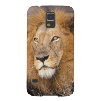 A portrait of a Lion looking into the distance Case For Galaxy S5