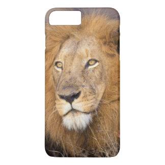 A portrait of a Lion looking into the distance iPhone 7 Plus Case