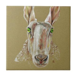 A portrait of a sheep tile