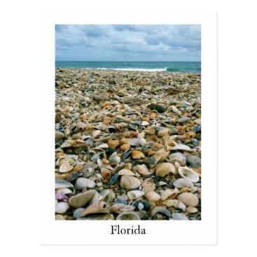 USA Themed A postcard of a Florida, USA beach with sea shells