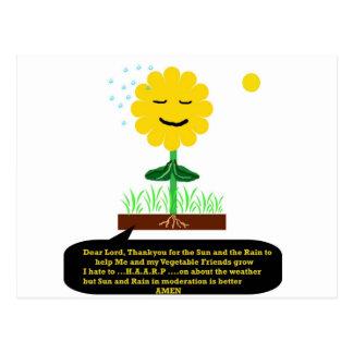 """""""A Prayer from a Flower""""* Postcard"""