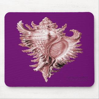 A predatory sea snail mouse pad