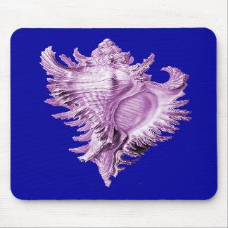 A predatory sea snail mouse pads