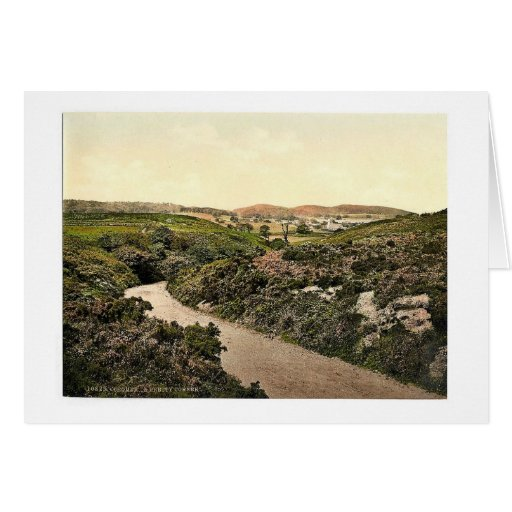A pretty corner, Cromer, England rare Photochrom Greeting Card