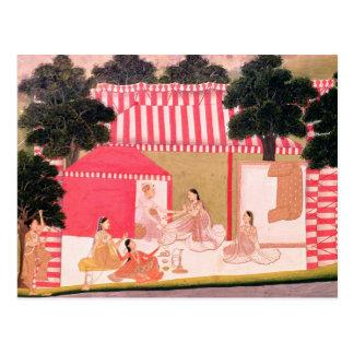 A Prince and his Harem Postcard