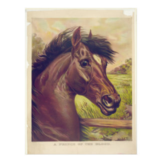 A Prince of the Blood by Currier & Ives Horse Head Photo