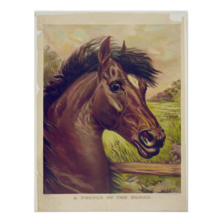 A Prince of the Blood by Ives Horse Head Poster