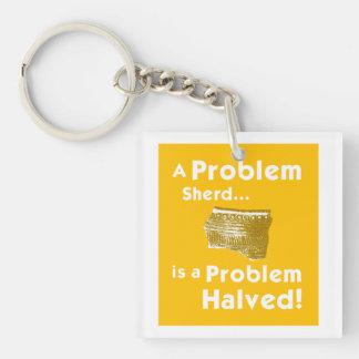 A Problem Sherd Key Chain