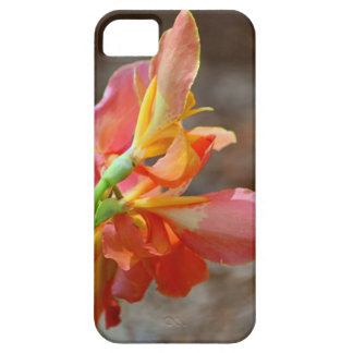 A Promise of More iPhone SE/5/5s Case