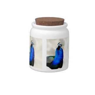 A proud peacock candy jar