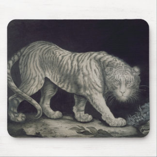 A Prowling Tiger (pencil on paper) Mouse Pad