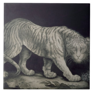 A Prowling Tiger (pencil on paper) Tile