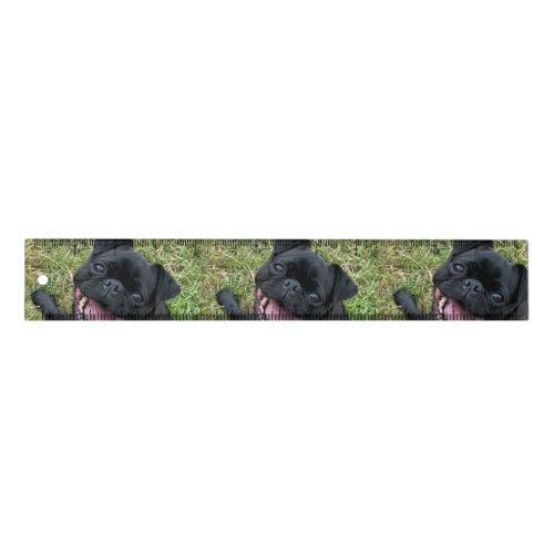 A Pug Ruler