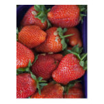 a punnet of ripe fresh strawberries for sale in postcard