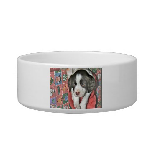 A Puppy For Christmas Pet Water Bowls
