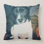 A puppy pillow