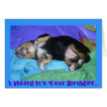 a pups hard day, I Heard It's Your Birthday, Greeting Card