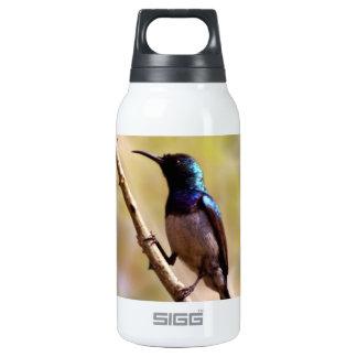 A purple Hummingbird Insulated Water Bottle