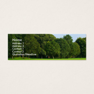 A Quiet Afternoon in the Park Mini Business Card