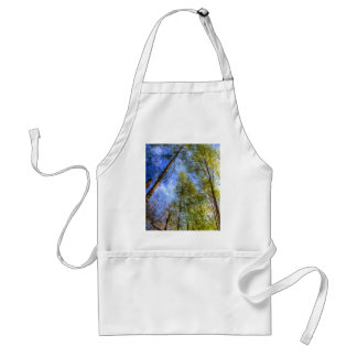 A Quiet Forest Aprons