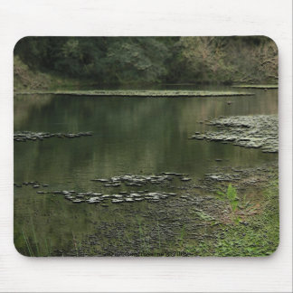 A Quiet Pond Mouse Pad