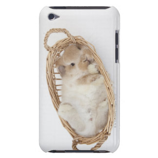A rabbit is in a basket.Holland Lop. iPod Case-Mate Cases