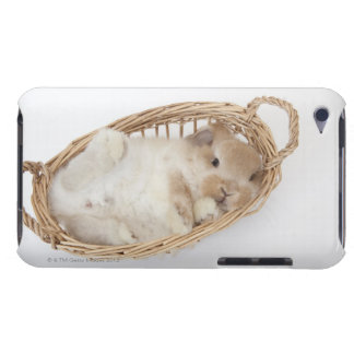 A rabbit is in a basket.Holland Lop. iPod Touch Cases