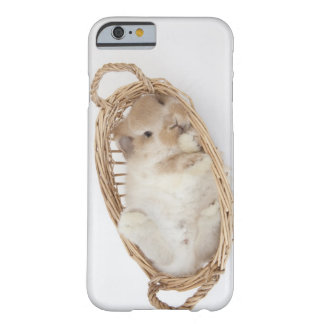 A rabbit is in a basket.Holland Lop. Barely There iPhone 6 Case