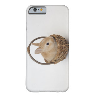 A rabbit is in a basket.Netherland Dwarf. Barely There iPhone 6 Case