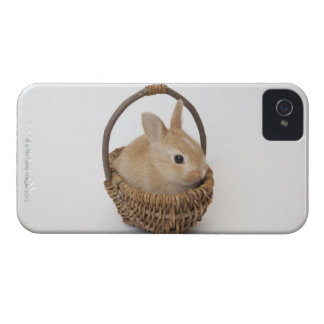 A rabbit is in a basket.Netherland Dwarf. Case-Mate iPhone 4 Case