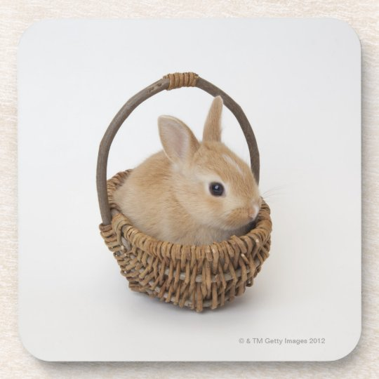 A rabbit is in a basket.Netherland Dwarf. Drink Coaster