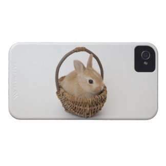 A rabbit is in a basket.Netherland Dwarf. iPhone 4 Case-Mate Case