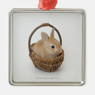 A rabbit is in a basket.Netherland Dwarf. Metal Ornament