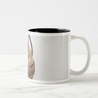 A rabbit is in a basket.Netherland Dwarf. Coffee Mug