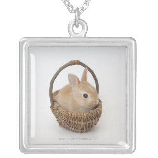 A rabbit is in a basket.Netherland Dwarf. Silver Plated Necklace