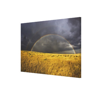 A rainbow appearing through a misty after noon canvas print