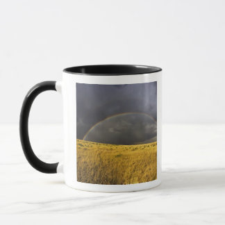 A rainbow appearing through a misty after noon mug