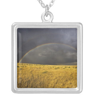 A rainbow appearing through a misty after noon silver plated necklace