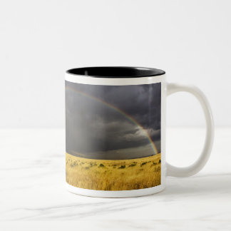 A rainbow appearing through a misty after noon Two-Tone coffee mug