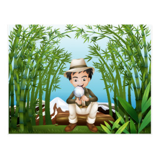A rainforest with a man holding a magnifying lens postcard