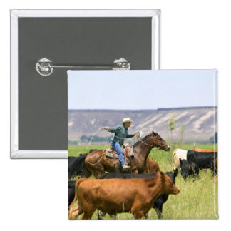 A rancher on horseback during a cattle roundup 2 inch square button