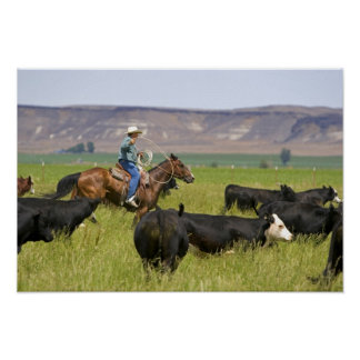 A rancher on horseback during a cattle roundup 2 poster