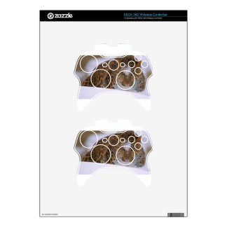 A Rare Amur Leopard Peers Over a Snowy Embankment. Xbox 360 Controller Decal