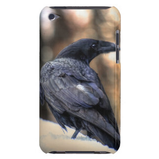 A Raven in Snow, Corvid-lovers Art Design Barely There iPod Cover