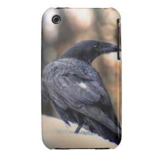 A Raven in Snow Corvid-lovers Art Design iPhone 3 Case-Mate Cases