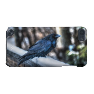 A Raven in Snow II, Corvid-lovers Art Design iPod Touch (5th Generation) Cover
