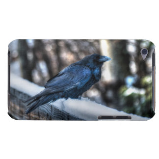 A Raven in Snow II, Corvid-lovers Art Design iPod Touch Case-Mate Case