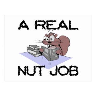 A Real Nut Job Squirrel Postcard