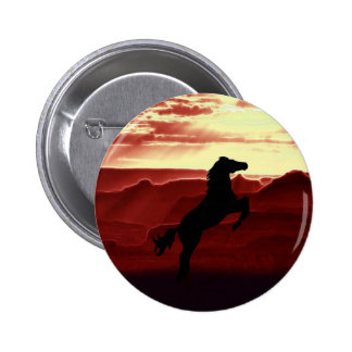 A rearing horse silhouette pins